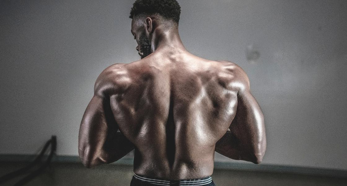 masa mięśniowa jak budować